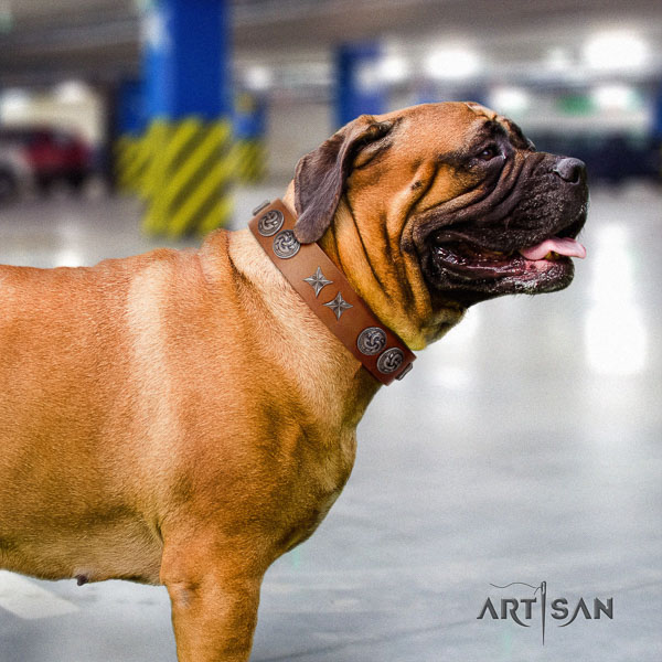 Bullmastiff easy to adjust full grain natural leather collar with adornments for your dog
