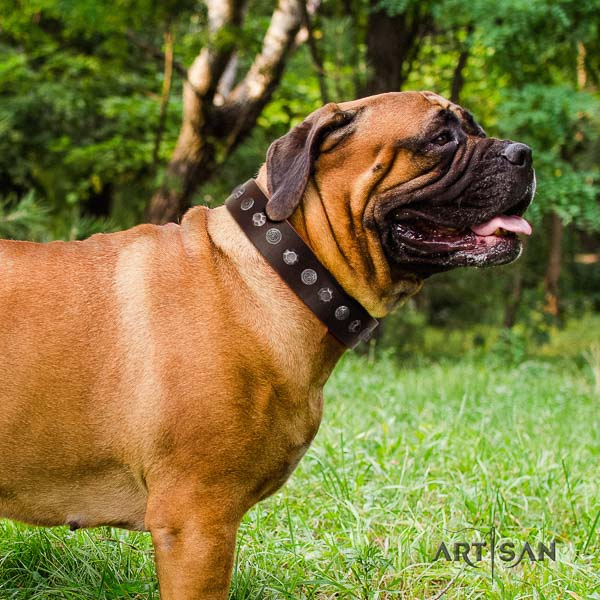 Bullmastiff handcrafted genuine leather collar with studs for your doggie