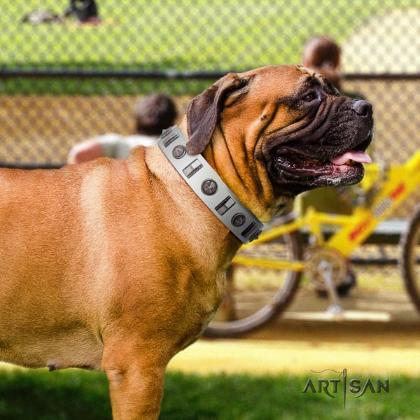 Bullmastiff handcrafted full grain natural leather collar with studs for your canine