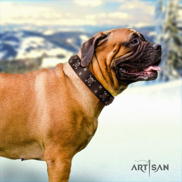 Bullmastiff genuine leather dog collar with adornments for your handsome canine