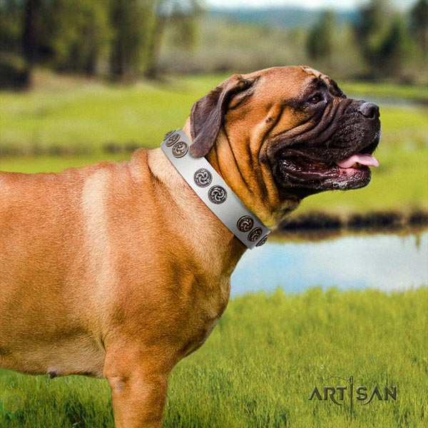 Bullmastiff designer natural genuine leather collar with studs for your doggie