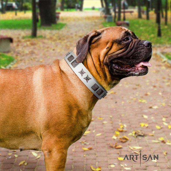 Bullmastiff designer genuine leather collar with adornments for your canine