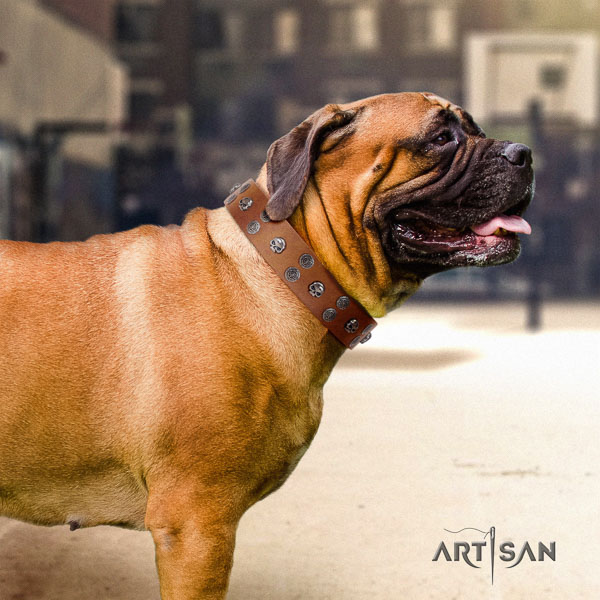 Bullmastiff adjustable full grain natural leather collar with adornments for your dog