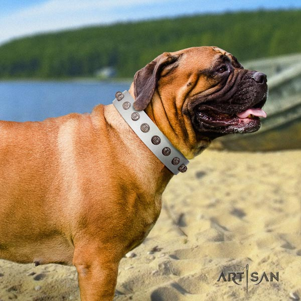 Bullmastiff perfect fit full grain leather collar with adornments for your pet