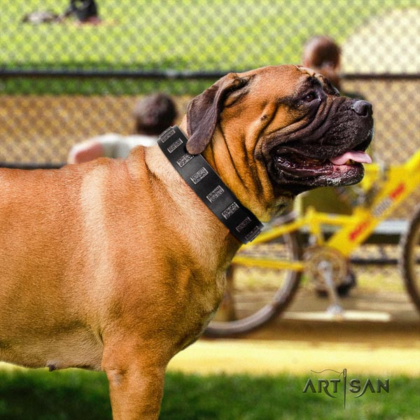 Bullmastiff easy wearing full grain genuine leather collar with adornments for your canine