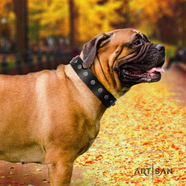 Bullmastiff convenient natural genuine leather collar with embellishments for your canine