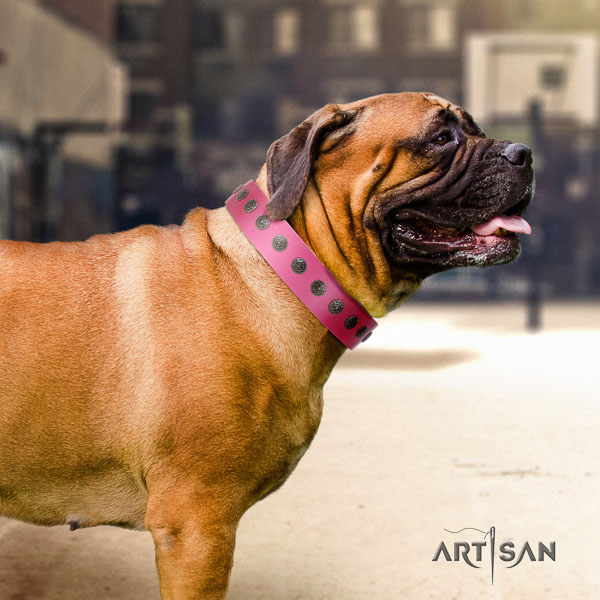 Bullmastiff incredible natural genuine leather collar with decorations for your dog
