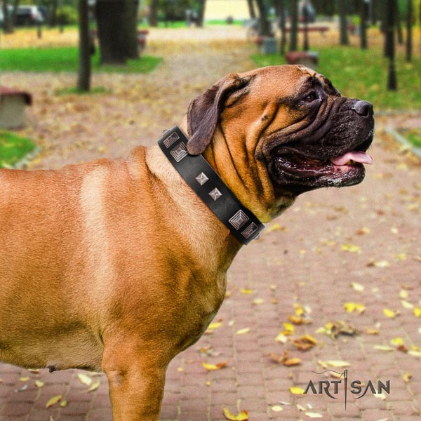 Bullmastiff full grain natural leather dog collar with embellishments for your attractive pet