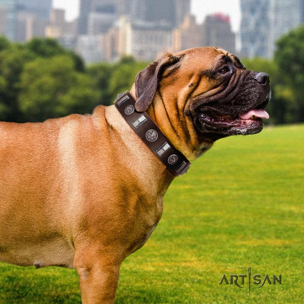 Bullmastiff fashionable genuine leather collar with studs for your four-legged friend