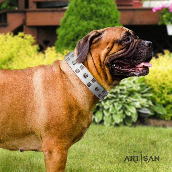 Bullmastiff adjustable genuine leather collar with studs for your pet