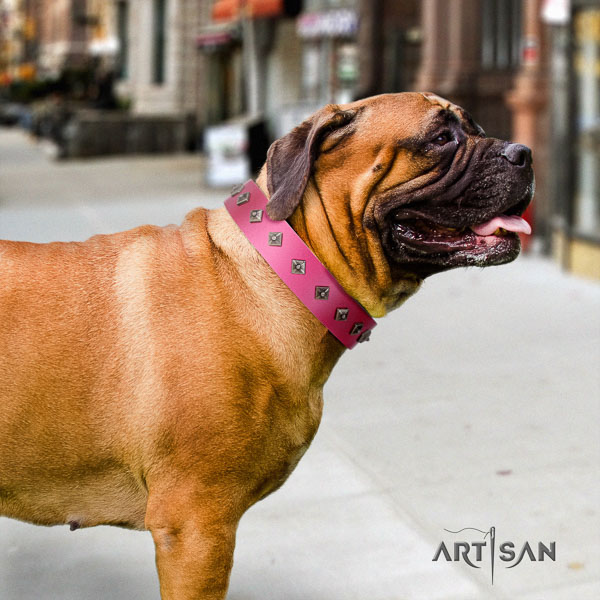 Bullmastiff top notch full grain genuine leather collar with studs for your dog