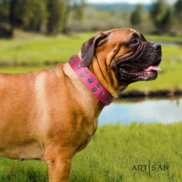 Bullmastiff unusual leather collar with studs for your doggie