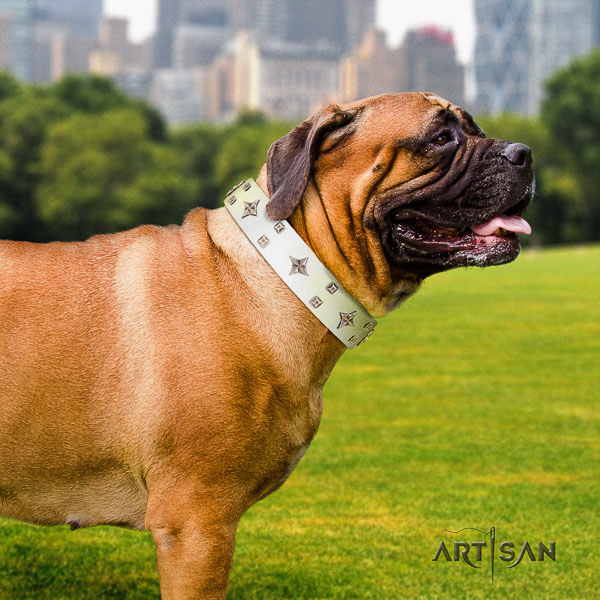 Bullmastiff unusual full grain leather dog collar with decorations for everyday walking