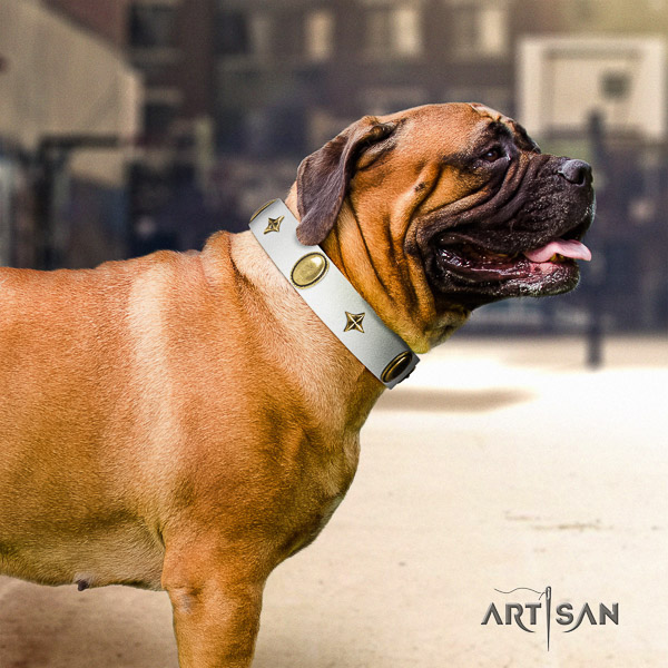 Bullmastiff basic training leather collar with adornments for your pet