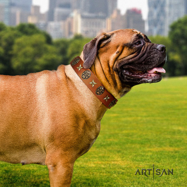 Bullmastiff handy use full grain genuine leather collar with embellishments for your canine