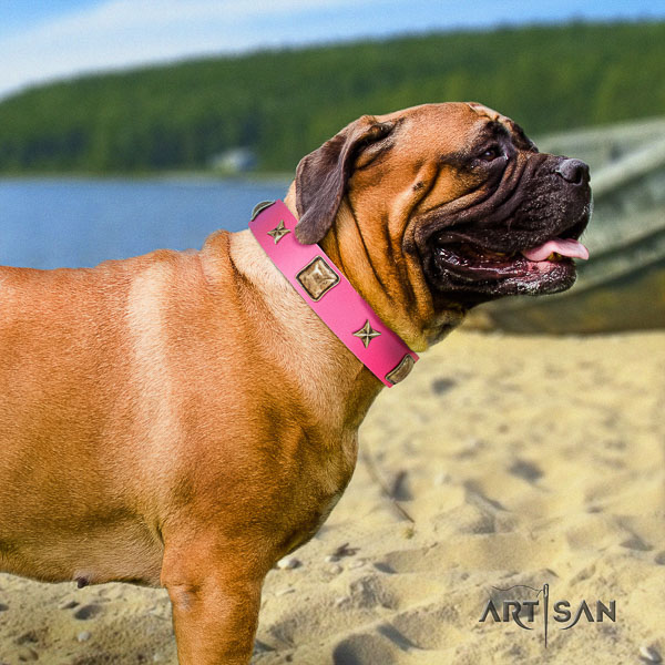 Bullmastiff fancy walking full grain genuine leather collar with adornments for your dog