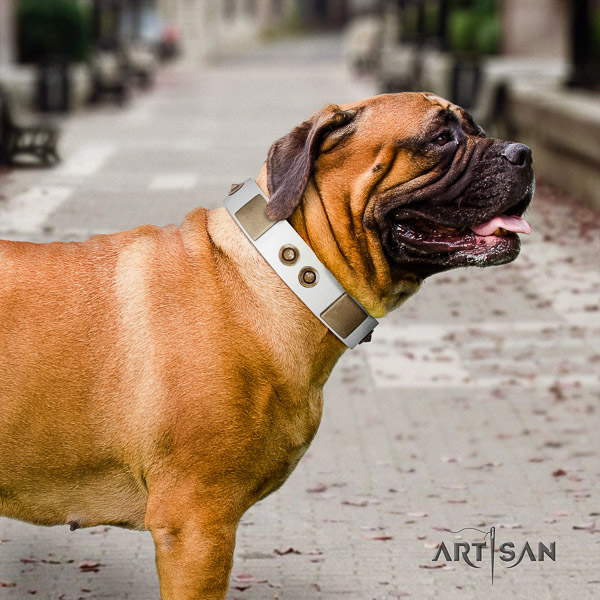 Bullmastiff handy use genuine leather collar with studs for your canine