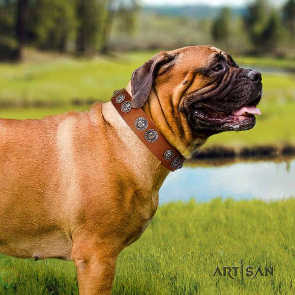 Bullmastiff stylish design full grain leather dog collar with decorations for handy use