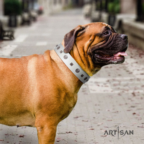 Bullmastiff easy wearing leather collar with embellishments for your dog