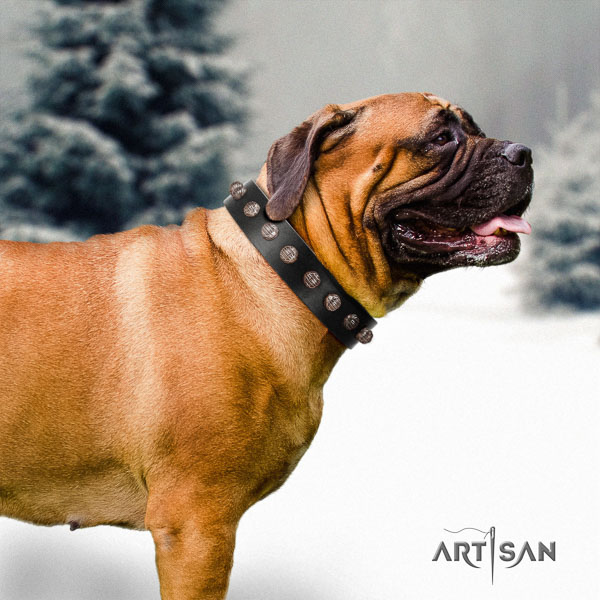 Bullmastiff perfect fit natural genuine leather collar with embellishments for your dog