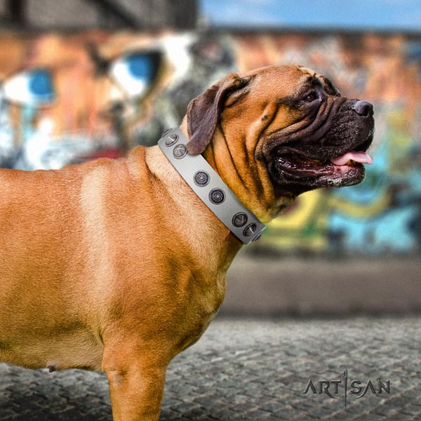 Bullmastiff easy to adjust leather collar with adornments for your four-legged friend