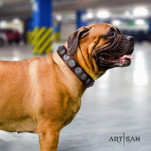 Bullmastiff unusual leather collar with embellishments for your dog
