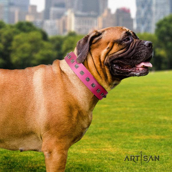 Bullmastiff stylish design genuine leather collar with adornments for your four-legged friend