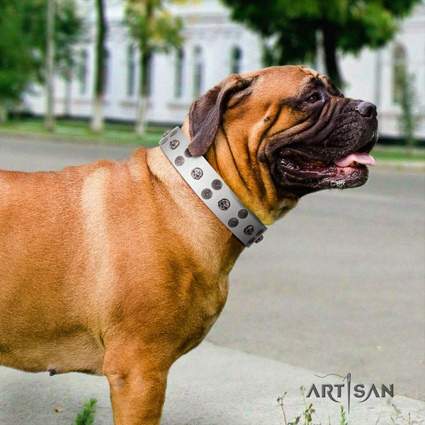 Bullmastiff amazing full grain natural leather collar with decorations for your pet