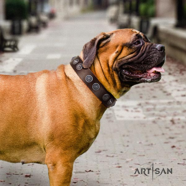 Bullmastiff easy adjustable full grain leather collar with studs for your canine