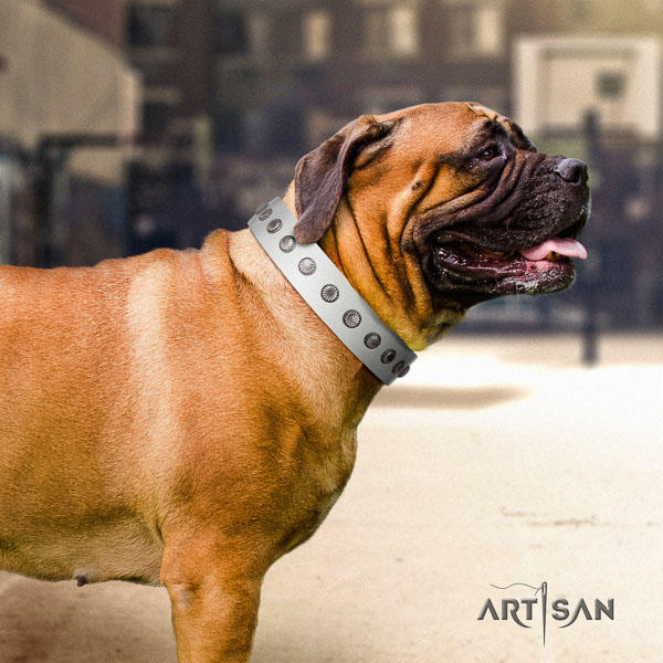 Bullmastiff easy wearing full grain genuine leather collar with adornments for your dog