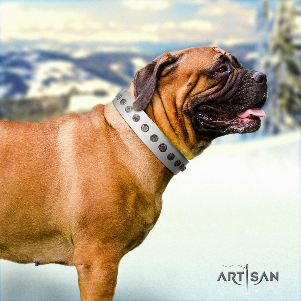 Bullmastiff incredible full grain natural leather collar with embellishments for your dog