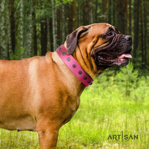 Bullmastiff easy to adjust genuine leather collar with studs for your dog