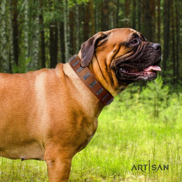 Bullmastiff easy adjustable full grain natural leather collar with embellishments for your dog