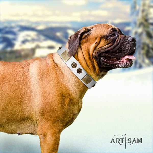 Bullmastiff easy wearing full grain genuine leather collar with embellishments for your pet