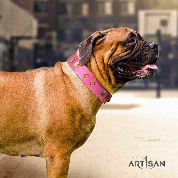 Bullmastiff daily walking full grain natural leather collar with adornments for your doggie