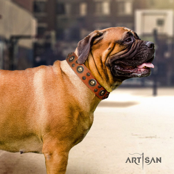 Bullmastiff comfortable wearing dog collar of incredible quality natural leather
