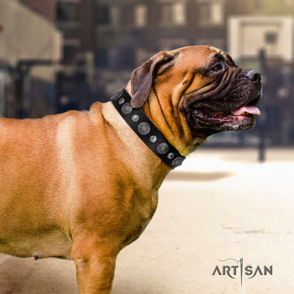 Bullmastiff handy use dog collar of exquisite quality natural leather
