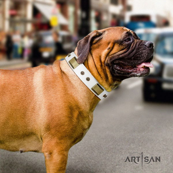 Bullmastiff handy use dog collar of incredible quality leather