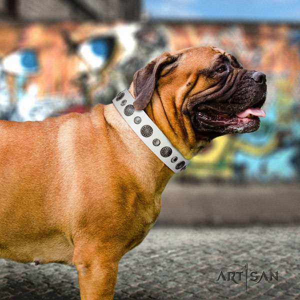 Bullmastiff daily walking dog collar of fashionable natural leather