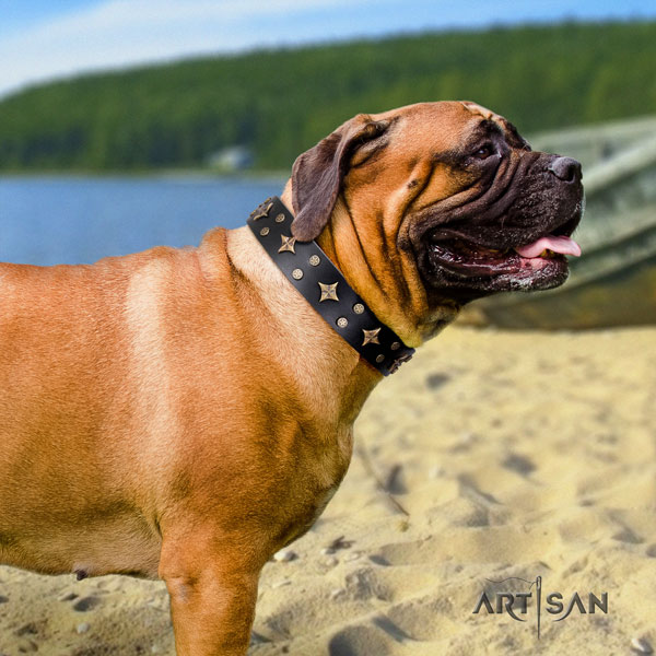 Bullmastiff comfortable wearing dog collar of significant quality leather