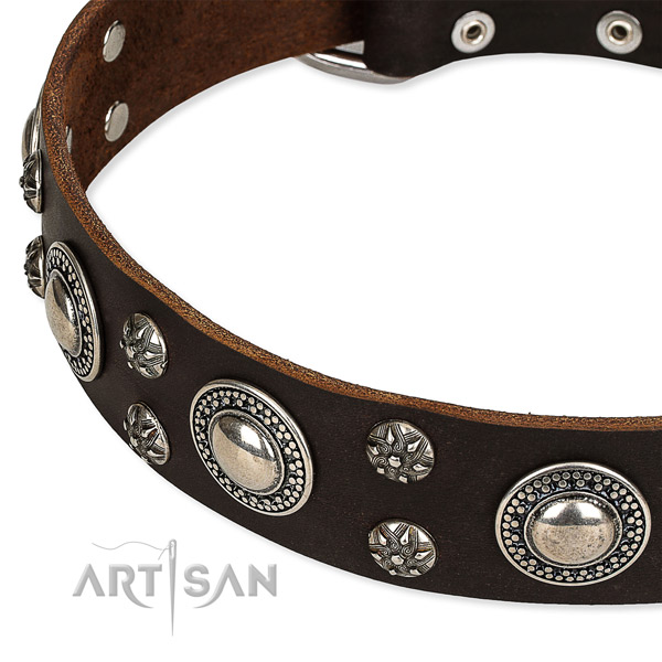 Easy to put on/off leather dog collar with extra strong rust-proof hardware