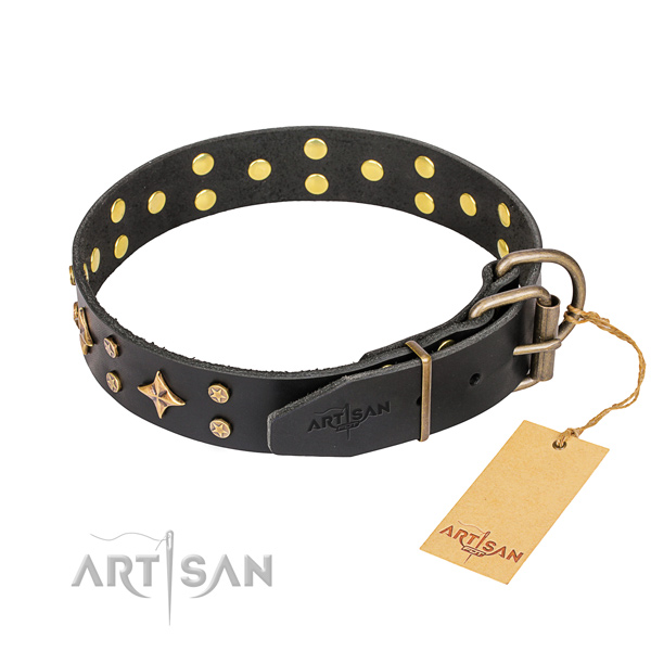 Daily use full grain leather collar with studs for your pet