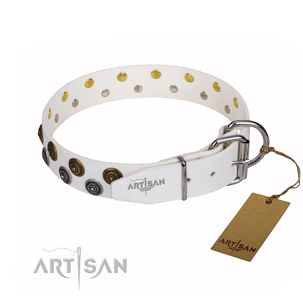 Walking full grain leather collar with adornments for your dog