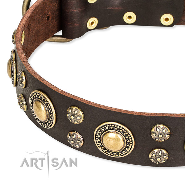 Leather dog collar with top notch decorations