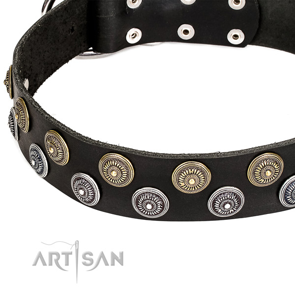 Genuine leather dog collar with impressive decorations