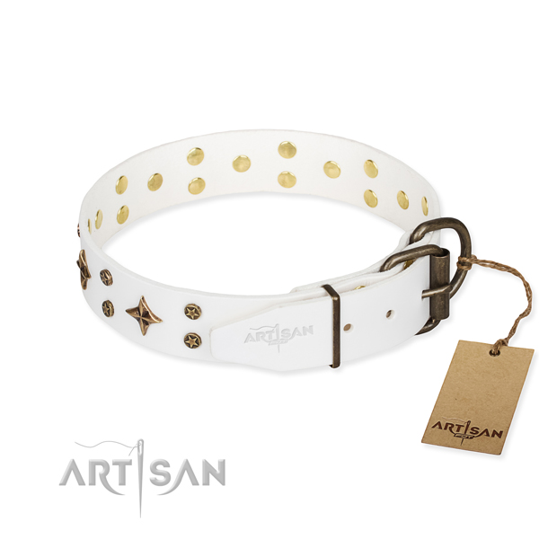 Everyday walking leather collar with embellishments for your doggie