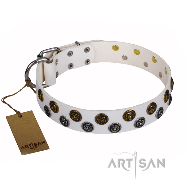 Amazing genuine leather dog collar for daily use