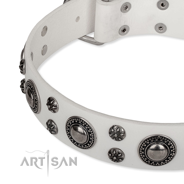 Handy use genuine leather collar with corrosion proof buckle and D-ring