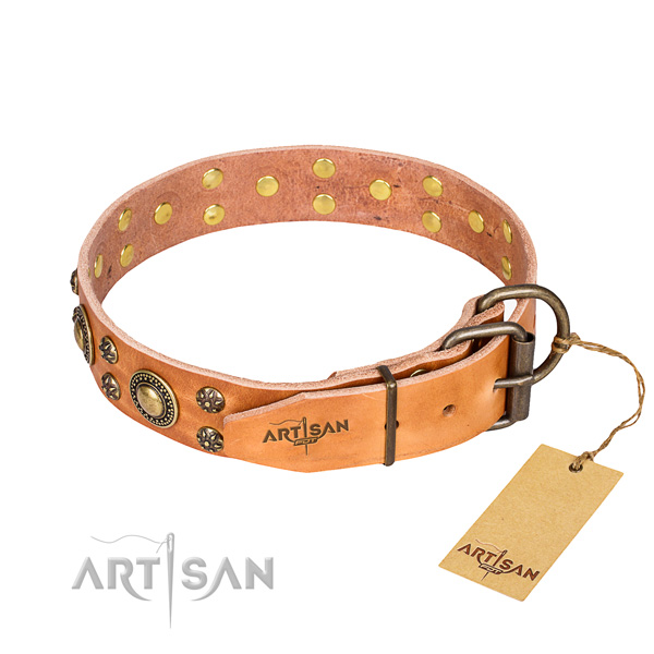 Daily use genuine leather collar with embellishments for your dog