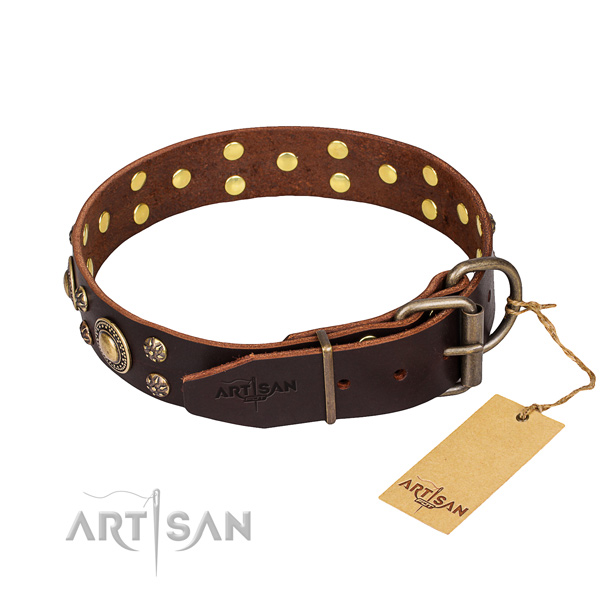 Walking full grain genuine leather collar with embellishments for your canine